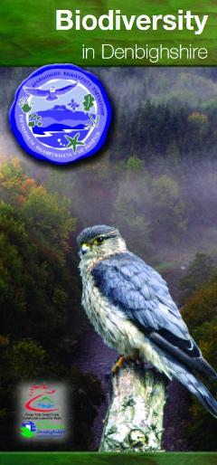 Biodiversity in Denbighshire