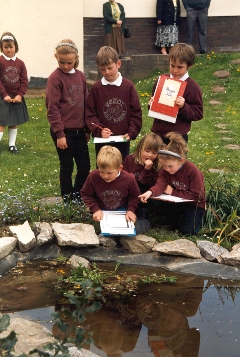 School children at Ysgol Bro Famau investigating their wildlife pond