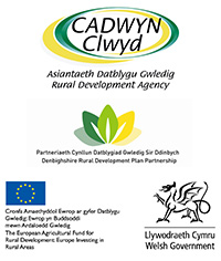 Accessible Denbighshire project funders